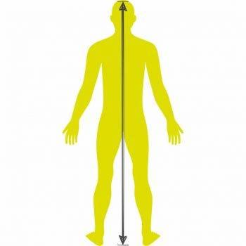 Grafik_Körpergroesse