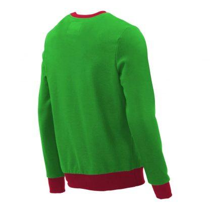 Pullover mit V-Ausschnitt_fairtrade_gruen_ED713C_rueck