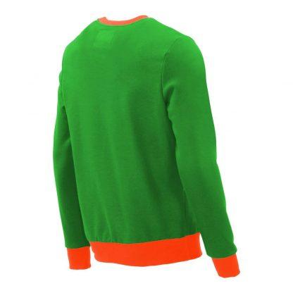 Pullover mit V-Ausschnitt_fairtrade_gruen_P59VI3_rueck