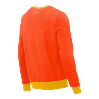 Pullover mit V-Ausschnitt_fairtrade_orange_BCOJ8U_rueck