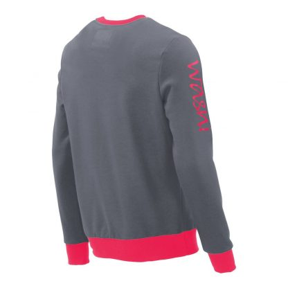 Pullover mit V-Ausschnitt_fairtrade_grau_NIT8ZU_rueck