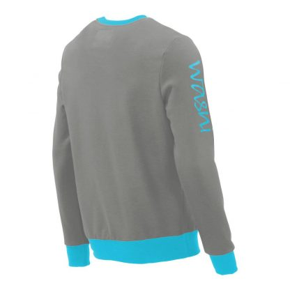 Pullover mit V-Ausschnitt_fairtrade_grau_U7E2QM_rueck