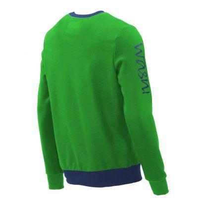 Pullover mit V-Ausschnitt_fairtrade_gruen_3KDV9C_back