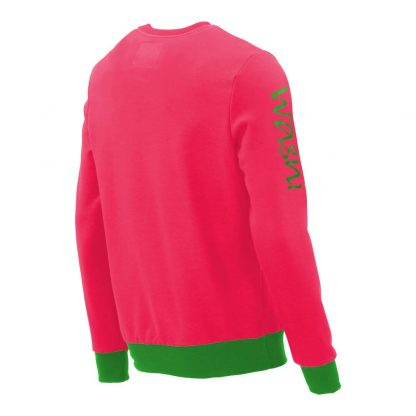 Pullover mit V-Ausschnitt_fairtrade_pink_XBEBAV_rueck